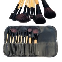 Professional 10 pcs Makeup Brush Set